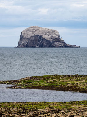 Bild: Bass Rock