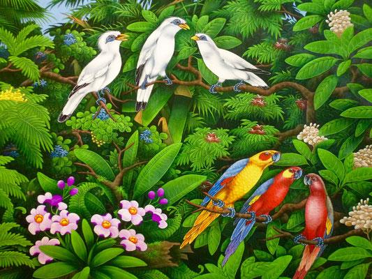 Bild: 3 Vögel auf Blättern