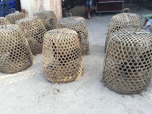 Bild: Hähne im Korb die auf ihren großen Kampf warten - Foto 1