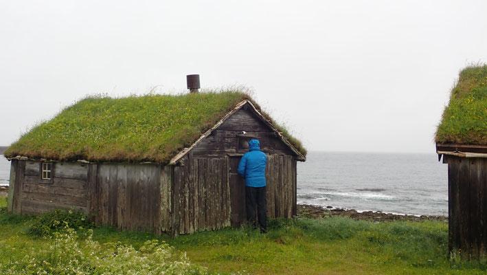 Bild: Hamningberg Hütte mit Birkenrindengrasdach