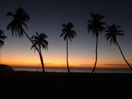 Bild: Sonnenuntergang hinter Palmen