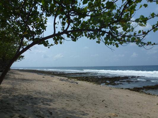 Bild: Am Strand von Pemuteran