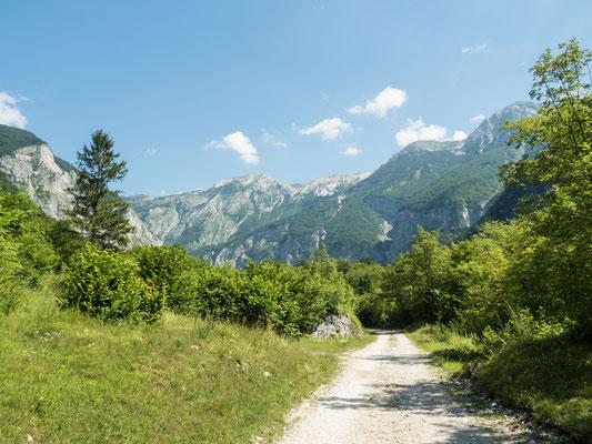 Landschaftsfoto 1