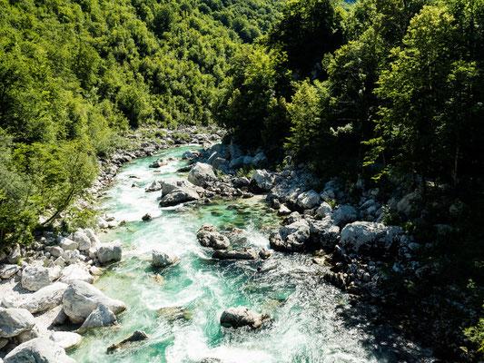 Bild: Fluss durch den Wald