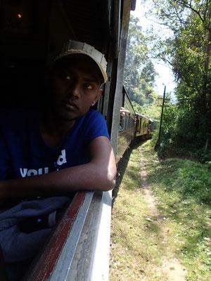 Bild: Die Landschaft aus dem fahrenden Zug betrachten