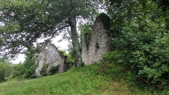 Bild: Ruinen