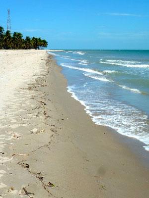 Bild: Wasser und Sandstrand
