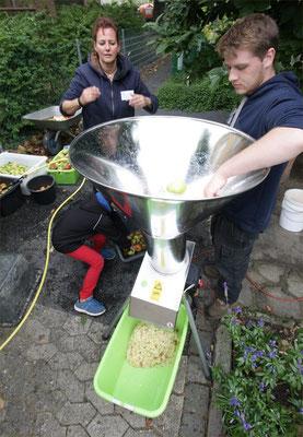 Mit dem Maischgerät werden die Äpfel zerkleinert....