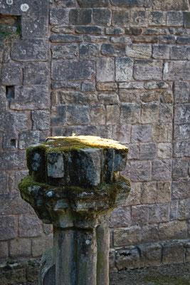 Die Ruinen der Fountains Abbey - Säule mit Moos - Zebraspider DIY Anti-Fashion Blog
