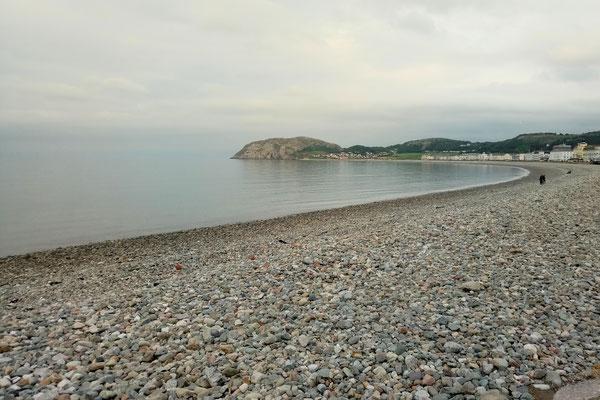 Zum Urlaub nach Cornwall - Llandudno Nordküste Wales - Zebraspider DIY Anti-Fashion Blog