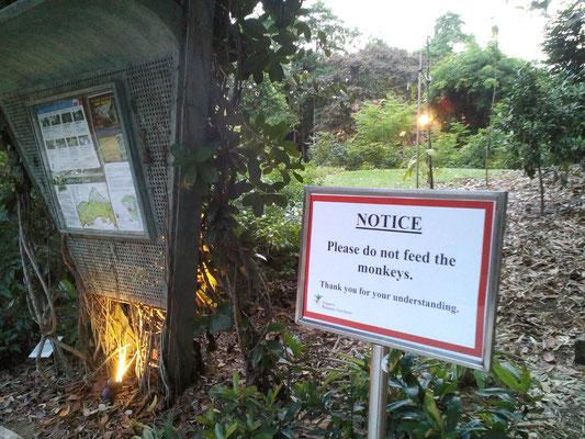 Genähte Kleinigkeit und große Reise - Singapur Botanischer Garten - Zebraspider DIY Anti-Fashion Blog