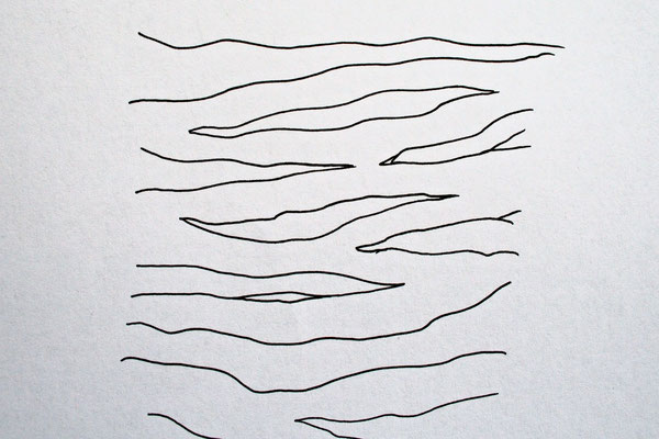 Zebramuster malen Schritt für Schritt - Streifen vorzeichnen 3 - Zebraspider DIY Blog