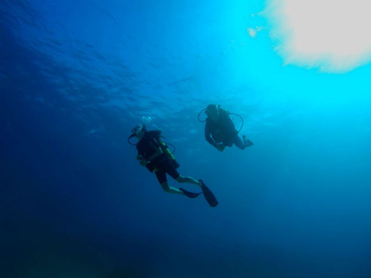 Deep diving in Punta Perdiz