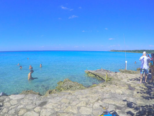 Punta perdiz, Kuba