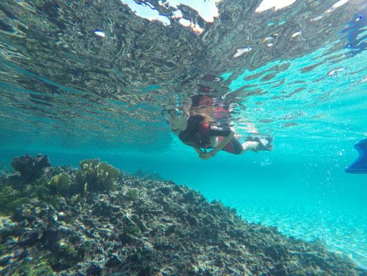 Inmersiones en Varadero