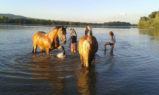 Wir waren noch mal im Rhein, Tonja fand es auch suuuuuper.