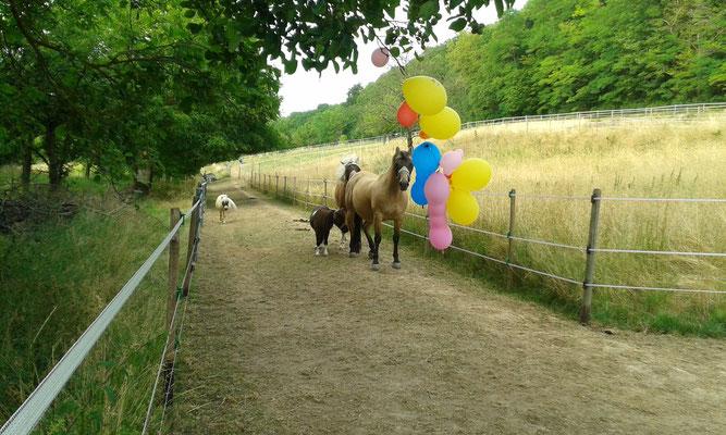 Luftballons machen Spaß! Mir zumindest, denn ich kann...