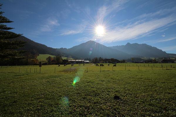 Heuberg @ STOABEATZ Festival Walchsee Tirol