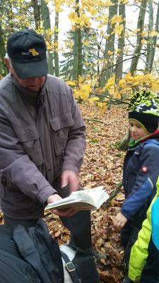 örg zeigt den Kindern, wie die Haubenmeise aussieht.