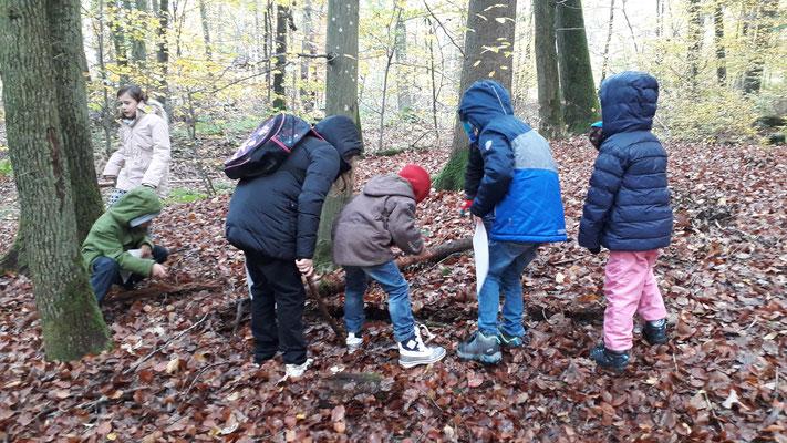 Die Kinder suchen unter den Ästen nach Insekten.