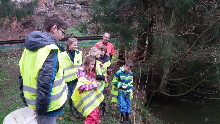 Am Ufer entdecken die Kinder weitere Kröten, die schon im Wasser sind
