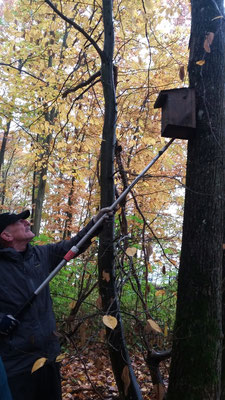 Rolf holt den ersten Kasten vom Baum runter.