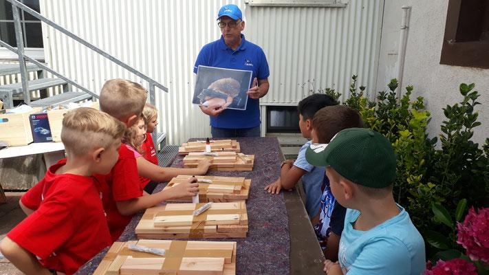Der Fledermausbotschafter zeigt den Kindern ein Bild von einer Fledermaus.