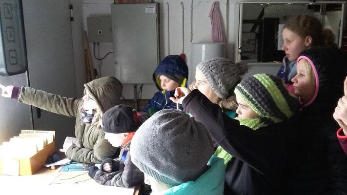 Durch ein Fenster beobachten die Kinder die Störche