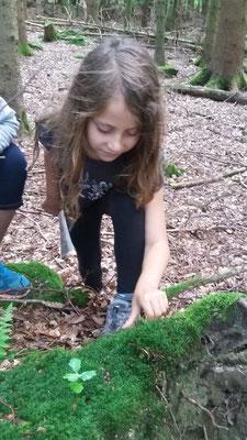 Sarah sucht im Moos nach Insekten.