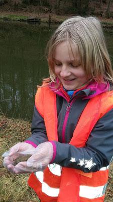Auch Lina traut sich eine Kröte in die Hand zu nehmen