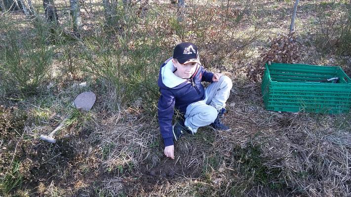 Joel legt eine Samenbombe ab.