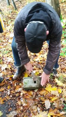Peter öffnet einen Steinkasten welcher vom Kleiber zugeklebt wurde.