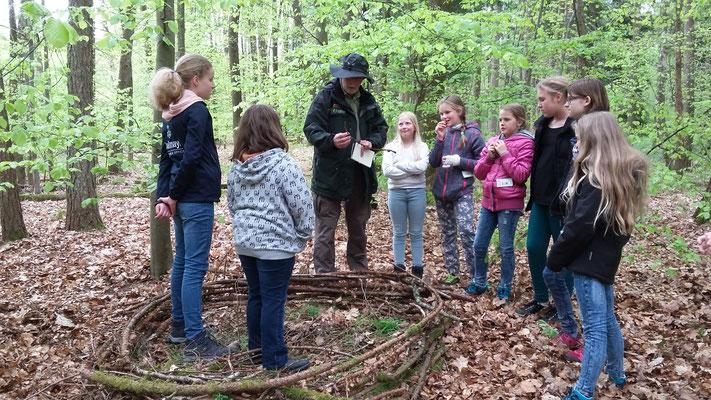 Herr Müller erklärt uns die Besonderheit von Fichtenzweigen beim Nestbau.