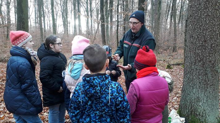 Im Wald angekommen zeigt uns Herr Müller was Eichhörnchen alles essen.