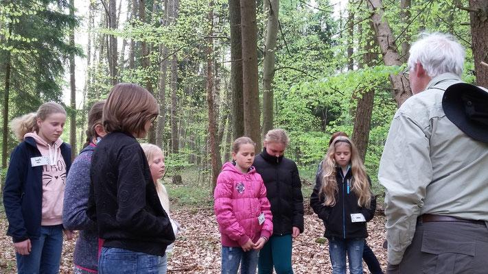 Im Wald angekommen sollen die Kinder die Augen schließen und auf die Geräusche achten.