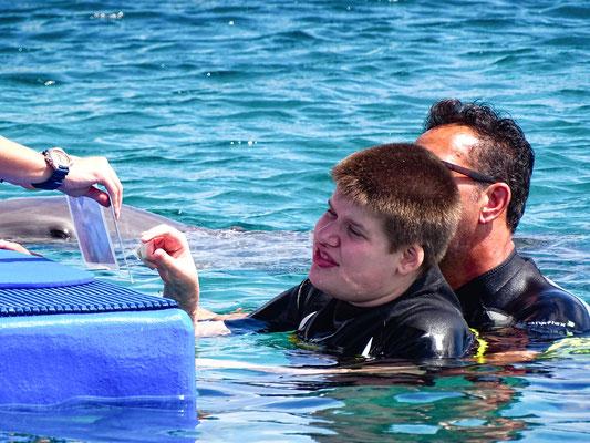 Aanwijzen welke opdracht de dolfijn moet doen