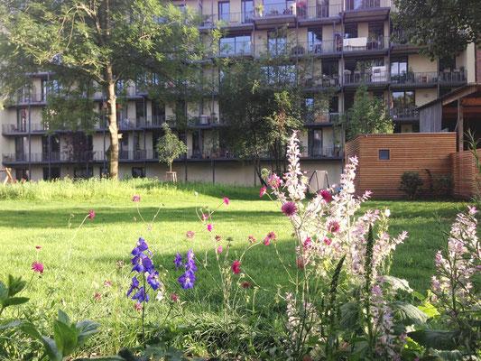 Blick von EG Terrasse in den Garten