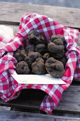Panier de truffes melanosporum