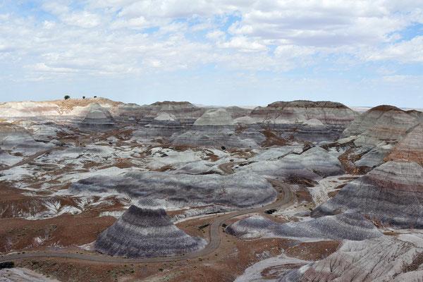 Petrified Forest National Park & Painted Desert, Arizona