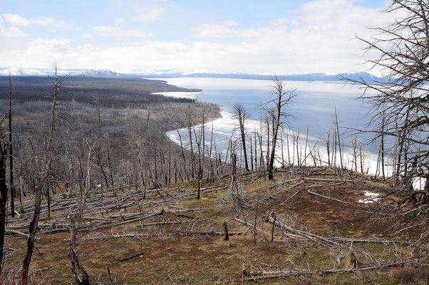 Yellowstone Lake / Yellowstone National Park, Wyoming