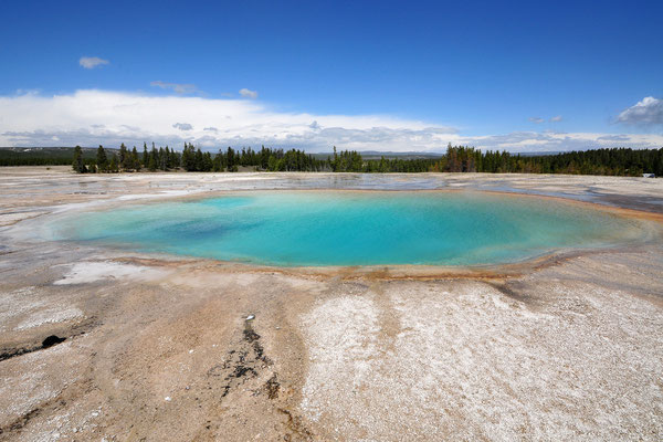 Midway Geyser Basin  / Yellowstone National Park, Wyoming