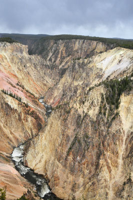 Grand Canyon of Yellowstone / Yellowstone National Park, Wyoming