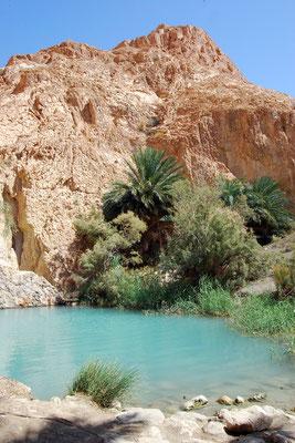 Chebika,Tunisie
