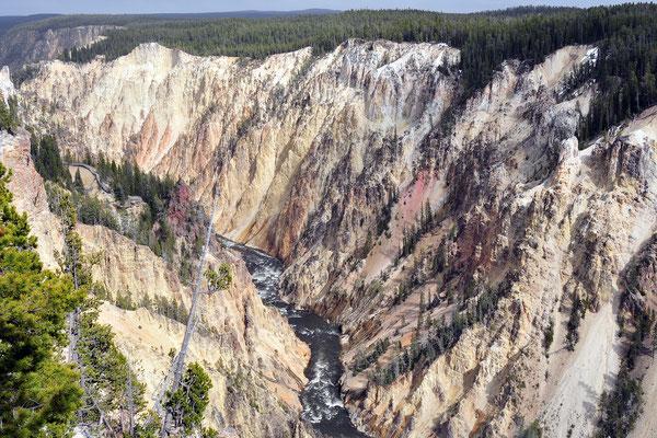 Grand Canyon of Yellowstone / Yellowstone National Park, Wyoming