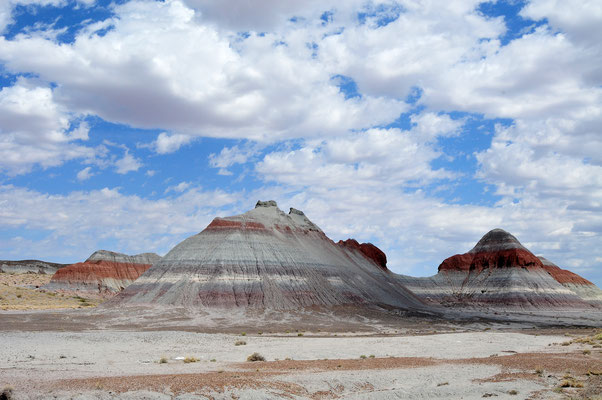 Petrified Forest National Park & Painted Desert, Arizona