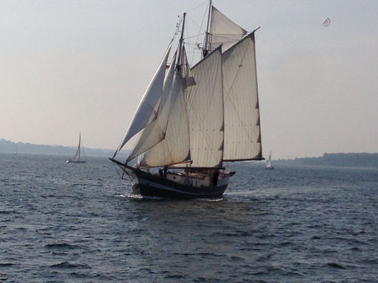 Stag Night Bachelor Party Sailing Ship