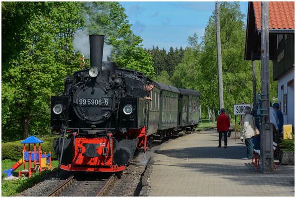 Harzer Schmalspurbahnen HSB (Wernigerode, Deutschland/Germany) - 03.06.2013