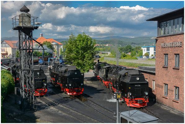 Harzer Schmalspurbahnen HSB (Wernigerode, Deutschland/German) - 07.06.2013