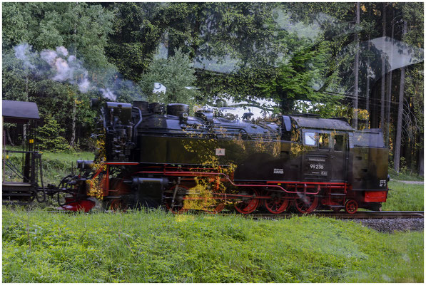 Harzer Schmalspurbahnen HSB (Wernigerode, Deutschland/Germany) - Spiegelung - 06.06.2013