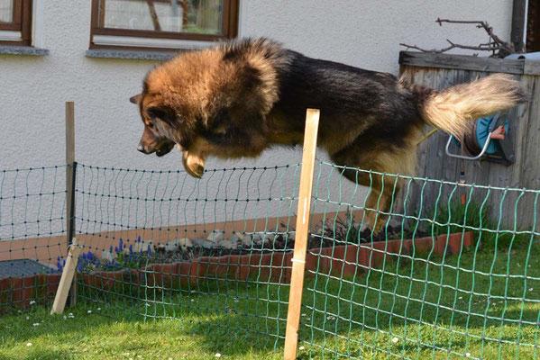 Mama kann fliegen! Sportlich!